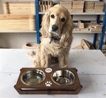 כלי אוכל ושתיה לכלב - אליוט M