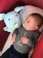 בובת תינוק, אהוד התינוק החמוד