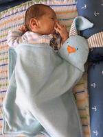 שמיכי, אהוד התינוק החמוד