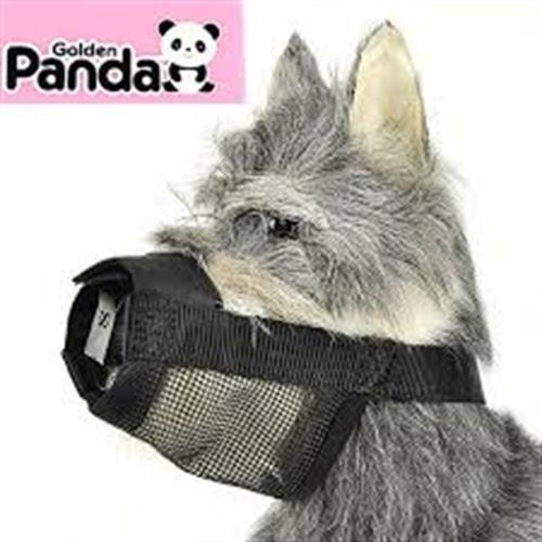 מחסום סקוטצ' לכלב פנדה (מידות 6 עד 8)