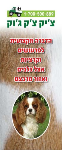 חומר הדברה להדברת פרעושים וקרציות אצל הכלב ואזור מרבצו