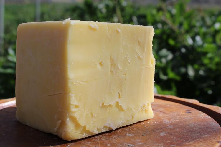 גבינה בסגנון צ'דר