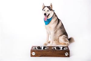 כלי אוכל ושתיה לכלב - ג'קסון XL