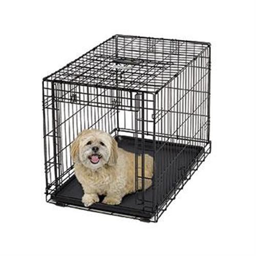 כלוב רשת לאילוף לכלבים קטנים
