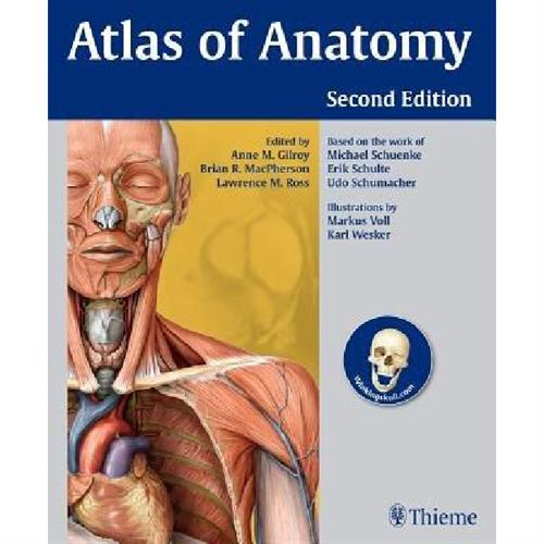 Gilroy - Atlas of Anatomy
