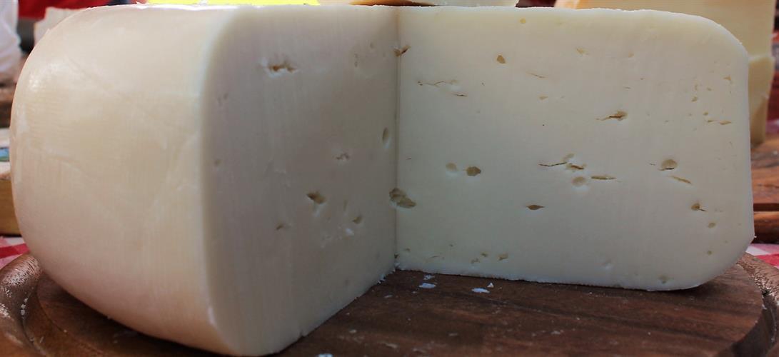 גבינה בסגנון גאודה