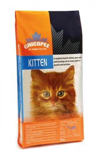 """צ'יקופי חתול קיטן (גור) 2 ק""""ג"""