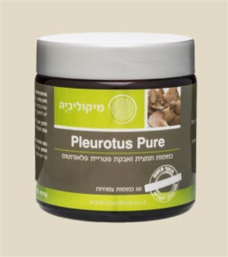 100% פלאורוטוס פיור - PLEUROTUS PURE