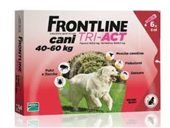 פרונטליין טרי-אקט 40-60 ק״ג 3 אמפולות לכלב